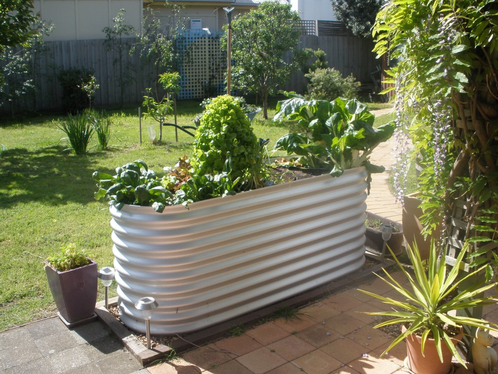 Colorbond Raised Garden Beds Stratco Corrugated Iron Garden Beds Geelong Raised Ballarat