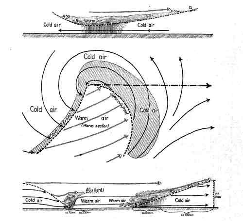 cold sore diagram
