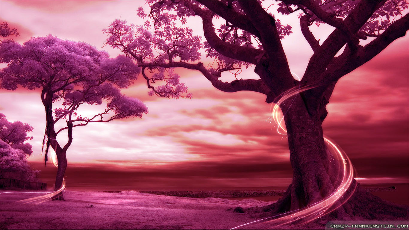 Wisteria Falls Wallpaper Beautiful Pink Tree Wallpaper Www Pixshark Com Images