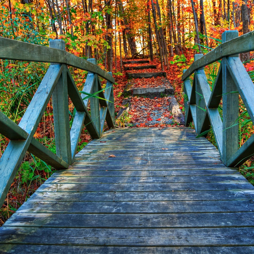 Pretty Fall Wallpapers Collection Of Beautiful Scenery Hd Wallpapers Free