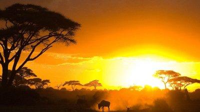 Kenya Wallpapers (40 Wallpapers) – Adorable Wallpapers