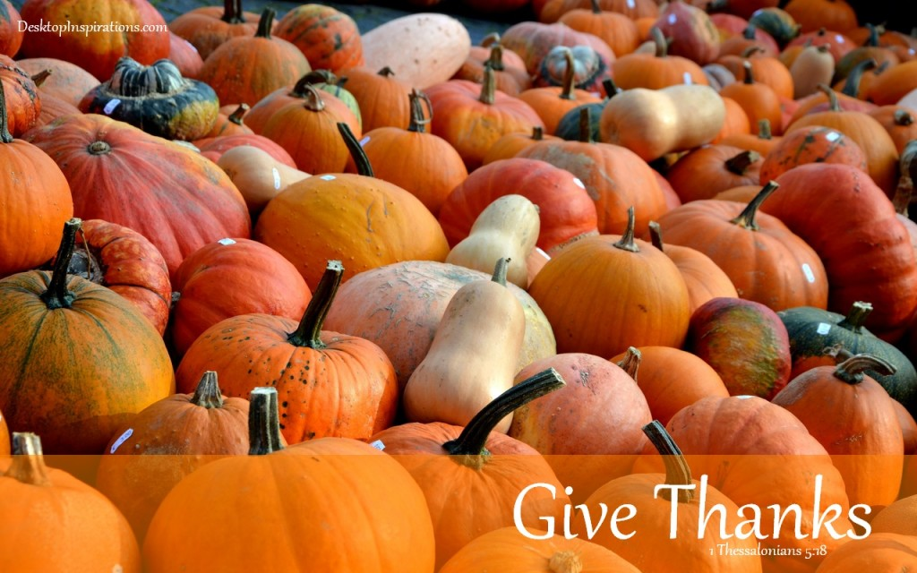 Free Fall Wallpaper For Pc Pumpkins Wallpapers For Desktop 40 Wallpapers Adorable