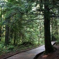 Shoreline Trail in Rocky Point Park, Port Moody - An Average Joe Cyclist Guide