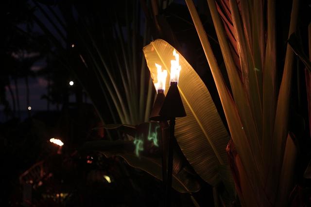 Torches at Humuhumunukunukuapua'a