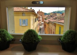 View of Bologna Italy from the Novocento Hotel
