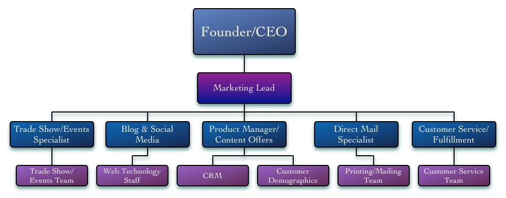 Eight Marketing Organizational Structures Aviation Business