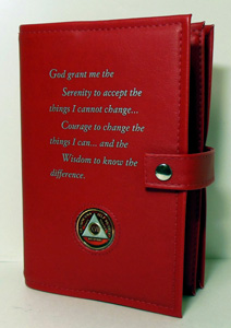 Alcoholics Anonymous Deluxe Double Book Cover