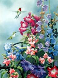 Victorian Seasons Hummingbird Birthday Card