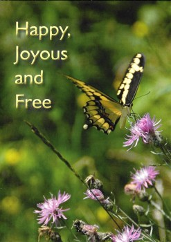 Happy Joyous and Free Butterfly Card