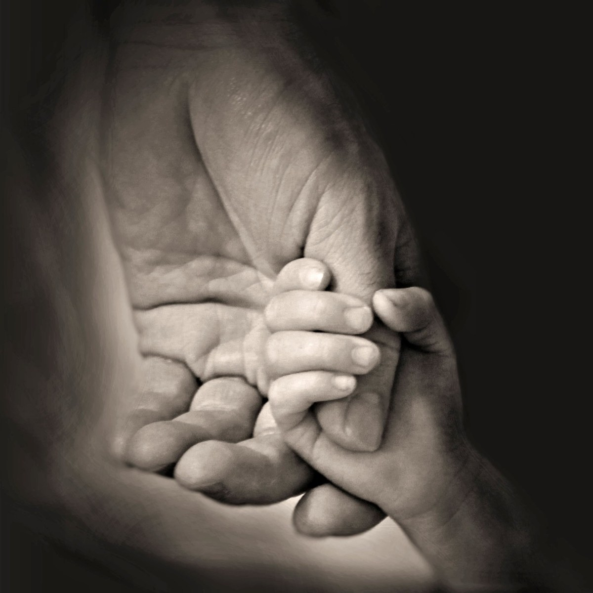 hands-407389