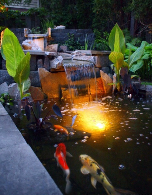 Moderner Koiteich Creating A Koi Pond In The Garden – Typical Extra For The