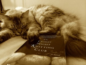 Hiro just about fell asleep reading this book.