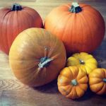 Pumpkins are for eating, not just for Halloween