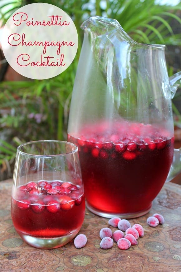 Poinsettia Champagne Cocktail – How to be awesome on $20 a day