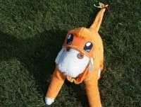 Charmander Pokemon Dog Costume