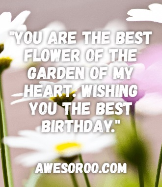 400+ BEST Happy Birthday Niece Wishes, Quotes  Images (2018)