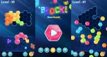 Hexa Puzzle Block Game