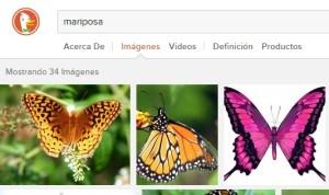 buscar-imagen