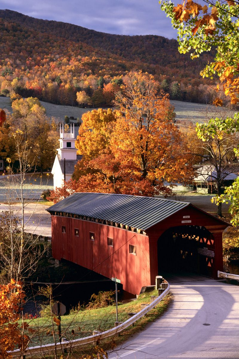 Free Fall Cat Wallpaper Country Pleasures West Arlington Vermont Bridges Wallpaper