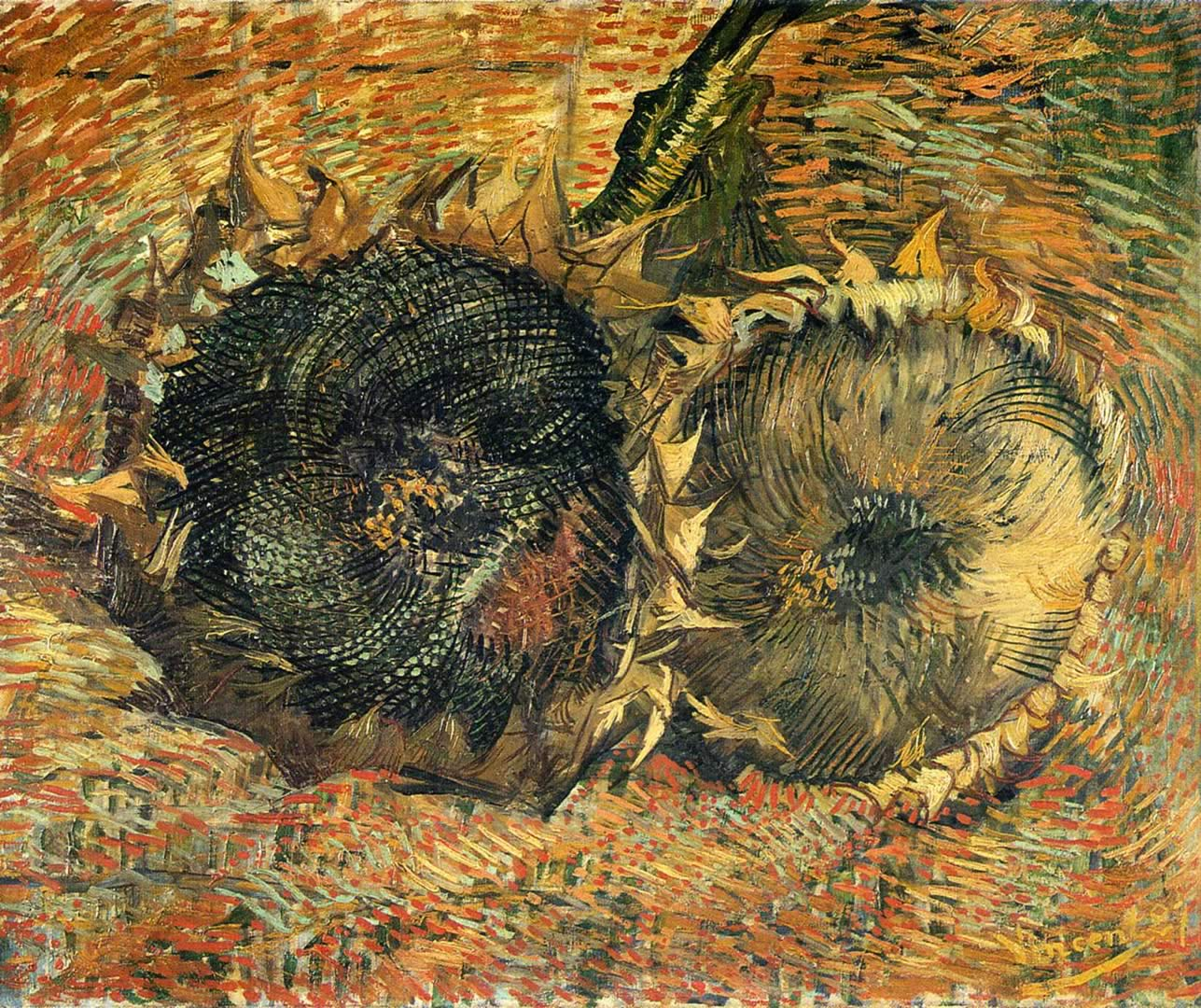 Vincent Van Gogh Paintings Sunflowers Still Life With Two Sunflowers Vincent Van Gogh