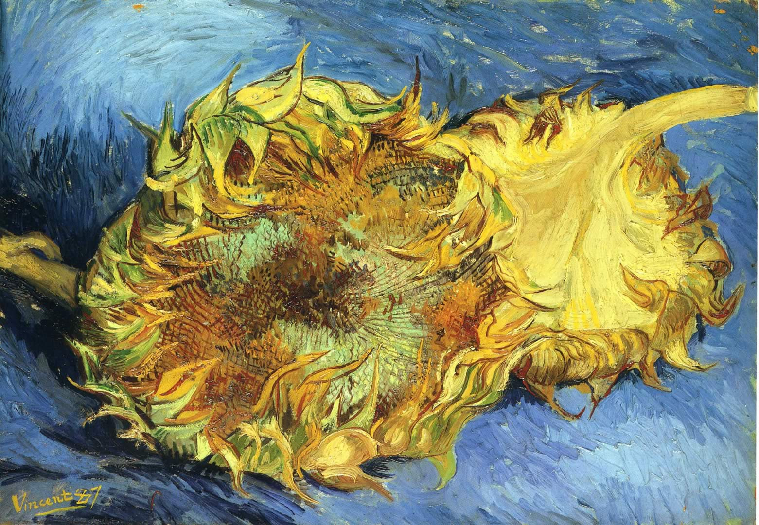 Vincent Van Gogh Paintings Sunflowers Still Life With Two Yellow Sunflowers Vincent Van Gogh