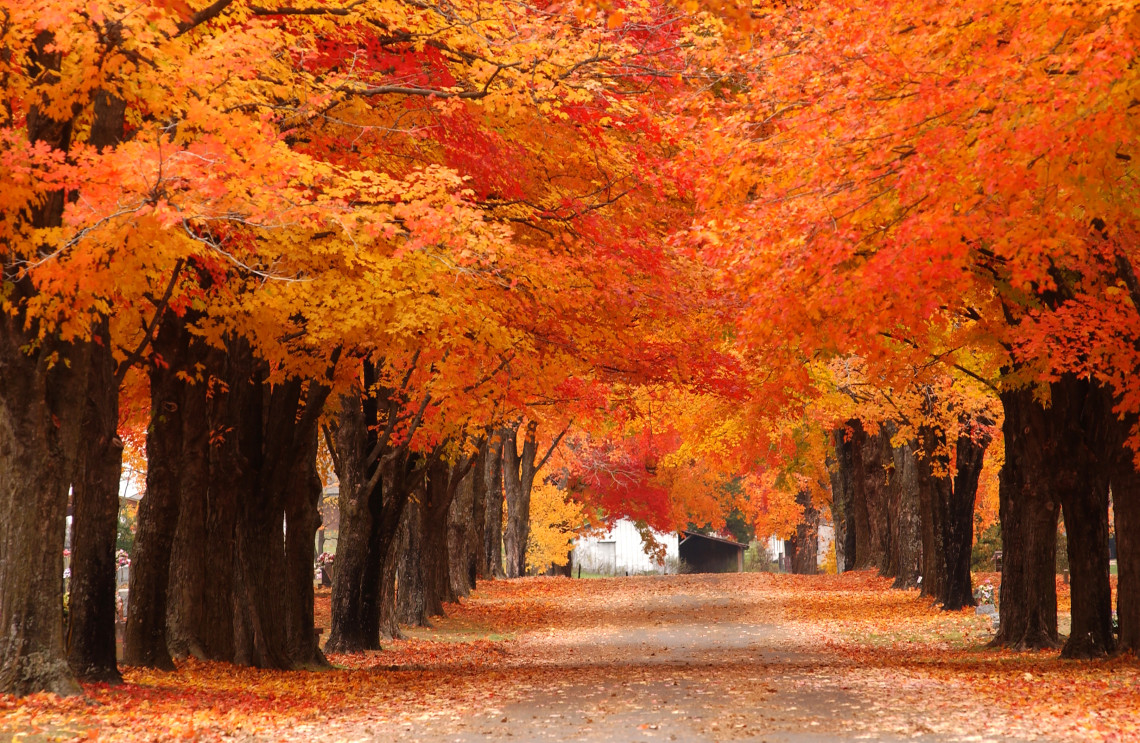 Upstate New York Fall Hd Wallpaper The Roads Less Traveled Not As Well Known Scenic Drives