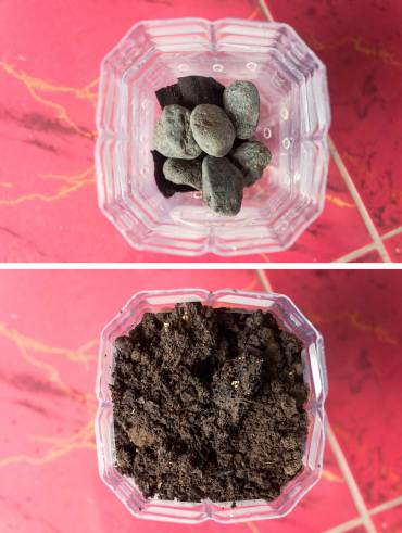 For drainage place a few rocks in your planter before adding a layer of soil. Now you're ready for planting.