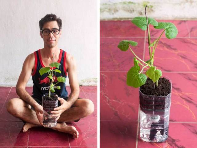 And there you have it, folks, your very own self-watering planter made from 100% up-cycled materials!