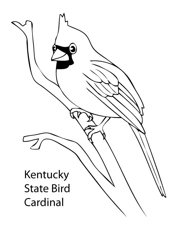 State Bird Coloring Pages Az Buckeye Tree