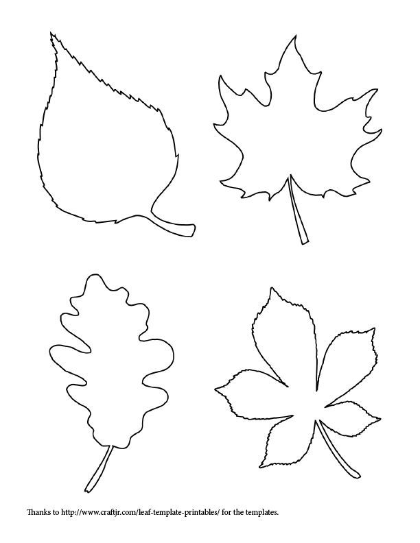 Printable Leaf Templates Coloring Home
