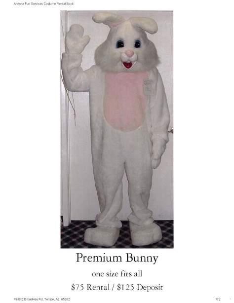 Premium Bunny 75