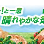 【終了】2018/6/20丸大食品 ピザ&スナックシリーズ ホッ!と一息 晴れやかな気分キャンペーン