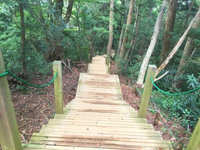 高尾山ウッドデッキ階段