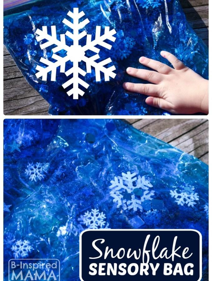 Snowflake Sensory Bag