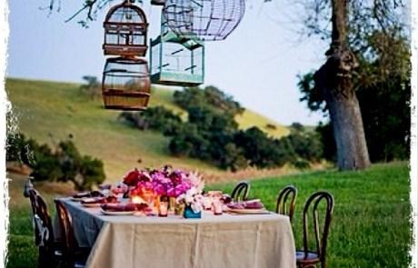 Heerlijke picknick op unieke locatie