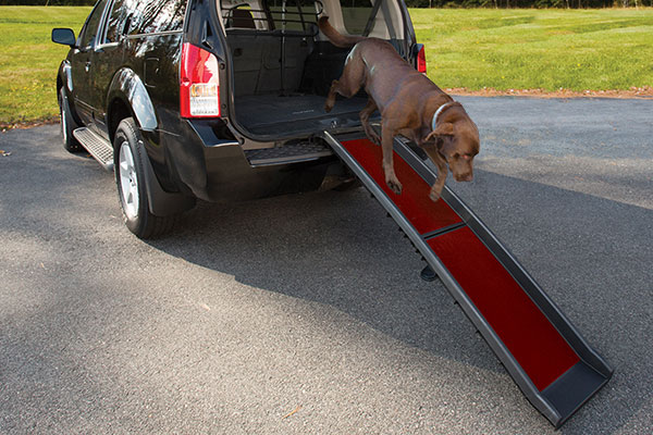 Kurgo Wander Dog Ramp Free Shipping From Autoanything