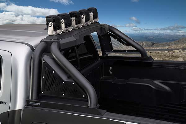 Go Rhino Sport Bar 20 Polished Or Black Free Shipping