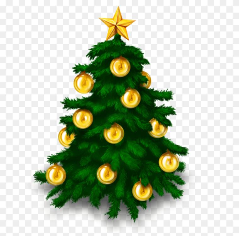 Christmas tree Download Computer Icons CC0 - Fir,Pine Family
