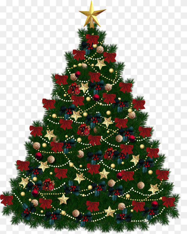 Christmas tree Fir Document CC0 - Fir,Pine Family,Christmas
