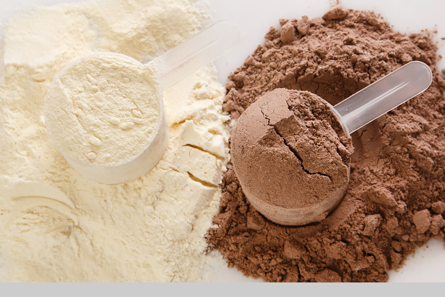 Proteine Poeder The Power Of Protein Powder Healthy Living Made Simple