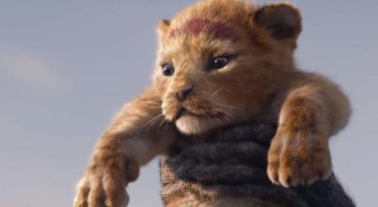 disney the lion king movie july 19 2019 trailers films