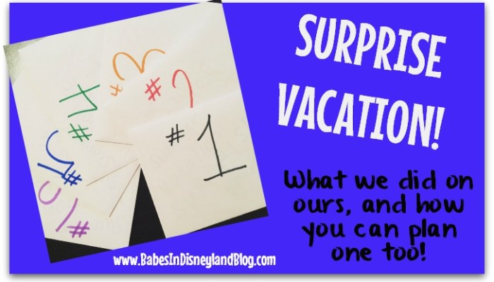 Surprise Vacation: What we did and how to plan your own!