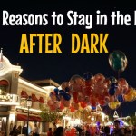 Top 5 Reasons to Stay in the Park After Dark