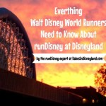 Everthing  Walt Disney World Runners Need to Know About runDisney at Disneyland