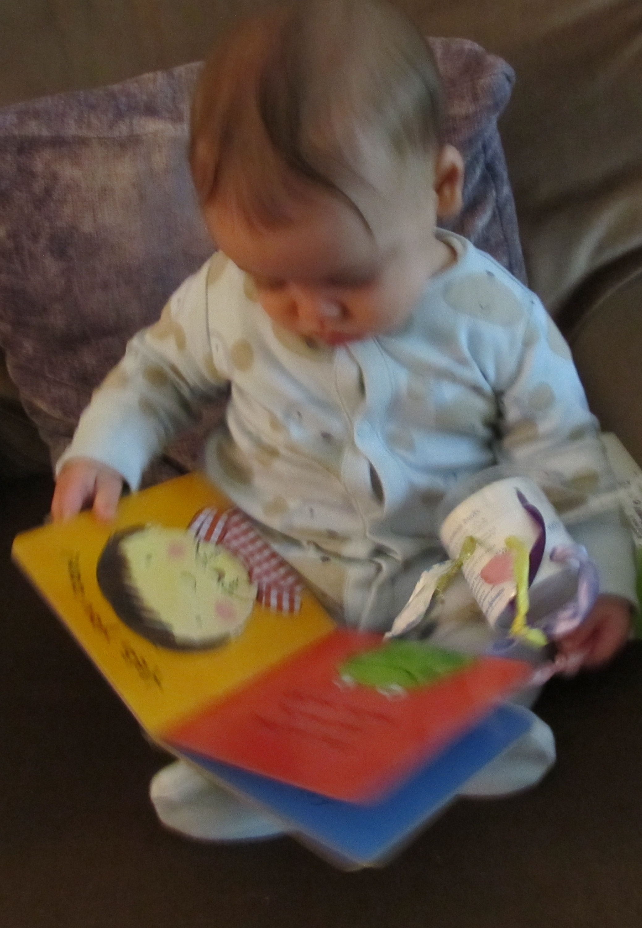 Infant Toddler Books Reading Baby Brain