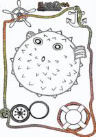 Ausmalbild-Meer-Kugelfisch