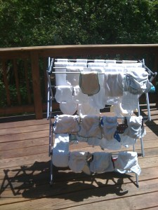 dipes 225x300 Cloth Diapering: what works for us