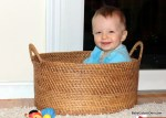 babe in a basket