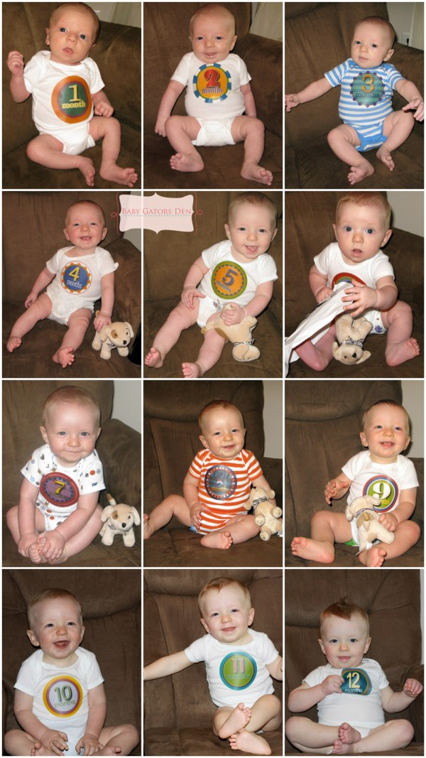 Jacksons First Year Pregnancy & Baby Collages