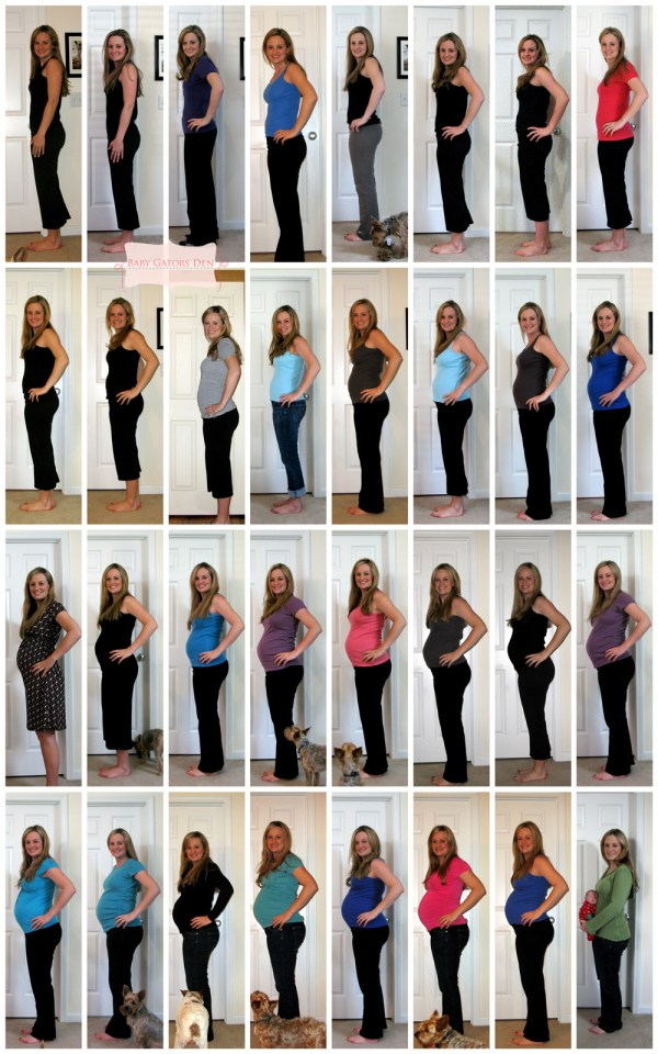 jacksonpregnancy Pregnancy & Baby Collages